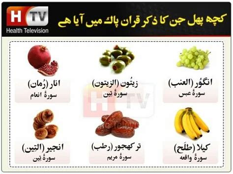 3 fruits mentioned in quran 64 best images about from health tv urdu on