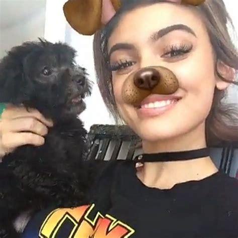 dog   kelsey