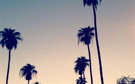 california palm trees vintage wallpaper desktop background
