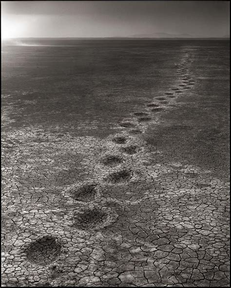 across the ravaged land nick brandt across the ravaged land