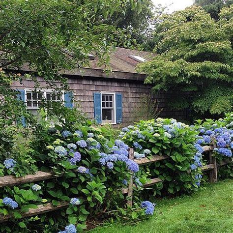 cottage garden fence hydrainga border split cedar fence cottage garden
