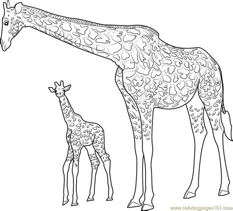 giraffe coloring pages pdf giraffe with baby coloring page free giraffe coloring