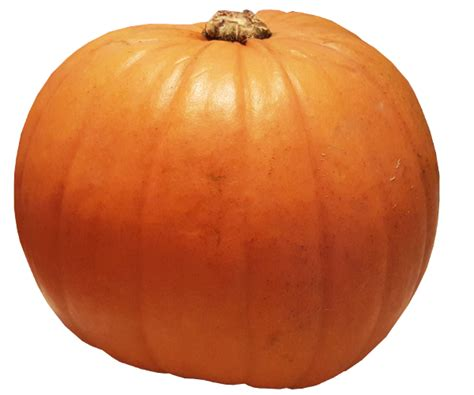 pumpkin background pumpkin transparent background image