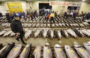 Japanese Style Kitchen Design new documentary on tsukiji fish market captures essence of