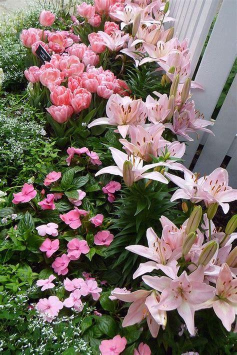 Garden Of Pink best 25 pink garden ideas on