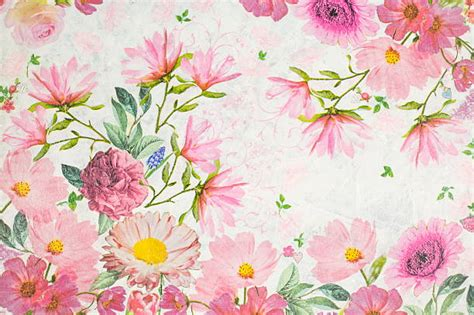 Custom Flowers Pattern 1 free floral design images pictures and royalty free stock photos freeimages