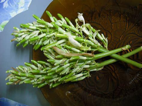 diet sihat bunga lengkuas