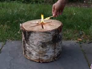 Firepit Logs Bonfire Logs Hgtv Design Design Happens