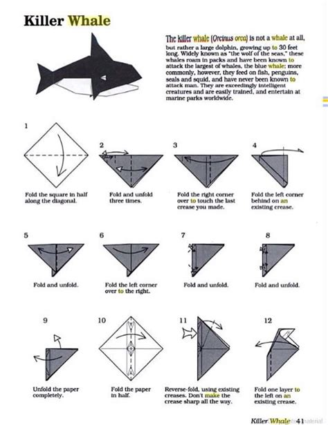 Origami Orca - origami orca part 1 of 3 make sure to