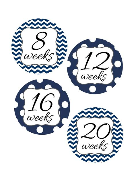 Pregnancy Stickers Photo Props weekly pregnancy stickers pregnancy announcement