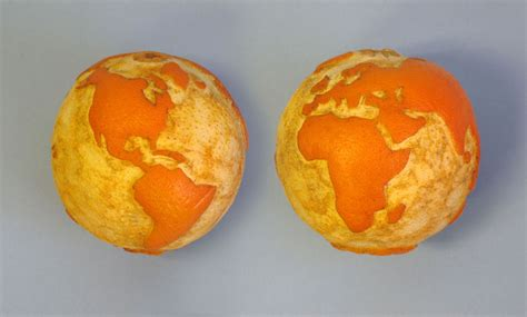 earthy orange earth orange fruit of the week