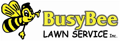 lawn care lawn service lawn mowing busy bee olympia