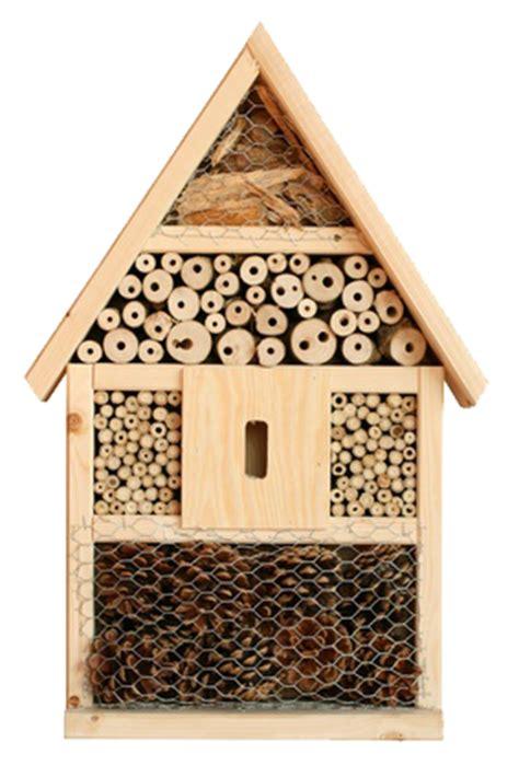 insektenhotel infos und kauftipps rund ums insektenhotel