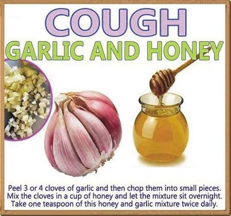 kitchen remedy for cough and cold daily inspirations for