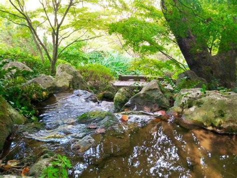 giardino zen roma giardino giapponese foto di orto botanico di roma roma