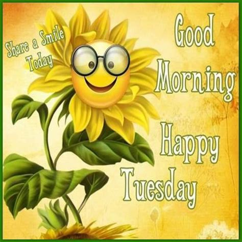 Happy Tuesday Meme - 25 best ideas about happy tuesday on pinterest happy