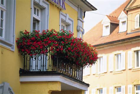 come arredare terrazzo con piante come arredare il balcone con i fiori non sprecare