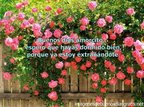 imagenes de buenos dias amor con flores esplendorosas tarjetas de buenos dias para mi amor