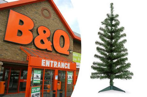 b and q best christmas trees 2017 b q selling trees for just 2 quid but you ll to be daily