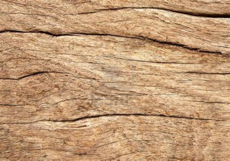 weathered wood 3582947 weathered wood grain texture close up background