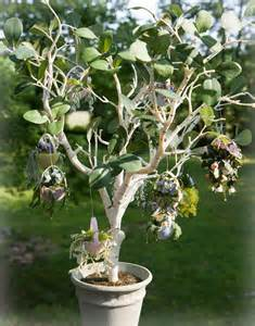 the dewing of the hanging plant easter egg tree all