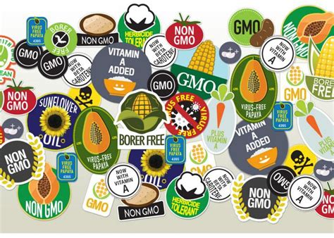 Ads American Essay Manipulate by Are Gmos Safe Yes The Against Them Is Of Fraud