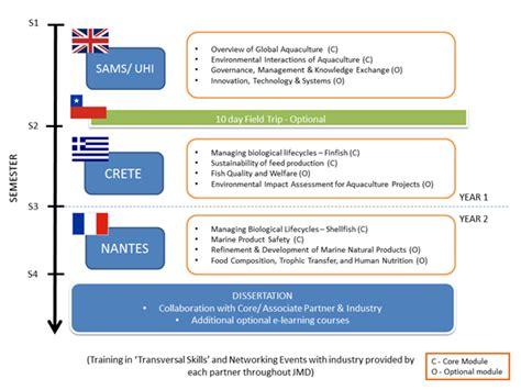 dissertation structure dissertation writing structure