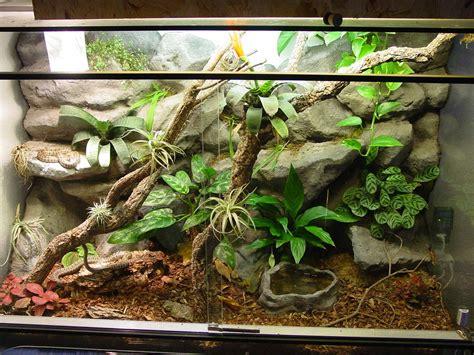 bettr ckwand kaufen 120cm terrarium mit design r ckwand und einrichtung in