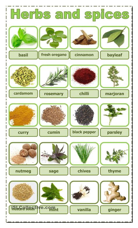 Herbs And Spices Worksheet herbs and spices educational herbs