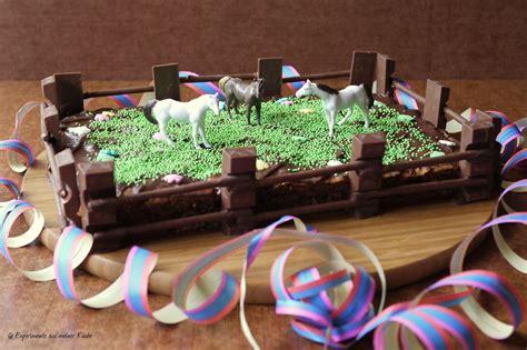 kuchen kindergeburtstag pferd experimente aus meiner k 252 che kindergeburtstag 1