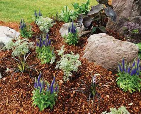 Best Mulch For Garden by The Best Mulch Types For Your Seasonal Garden Farm And