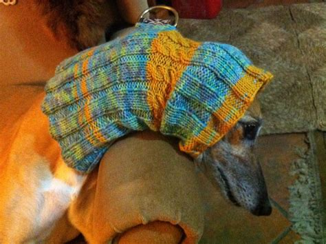 knitting for greyhounds 17 best images about greyhound knitting on