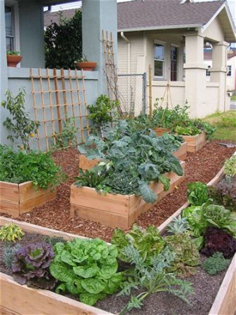 Quot Edible Front Lawns I M Collecting Inspirational Images Turn Lawn Into Vegetable Garden