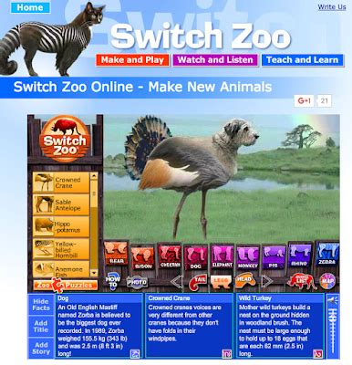 switch zoo make new animals the library voice 7 ways to teach animal adaptations with