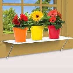 window plant shelf shelf accessories
