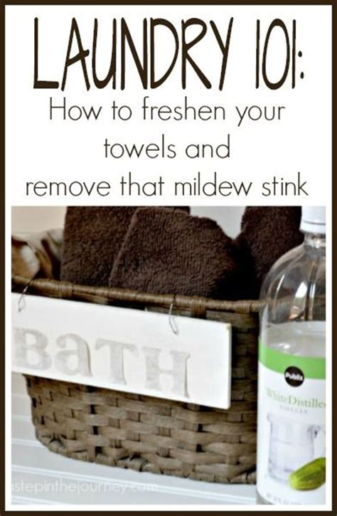 how to remove musty smell from bathroom 446961 best diy home decor images on pinterest funky