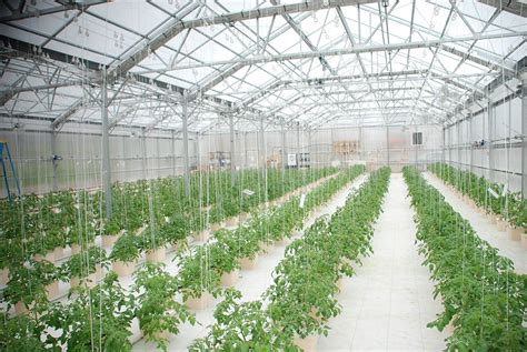 green house plans designs hydroponic greenhouse rimol greenhouses