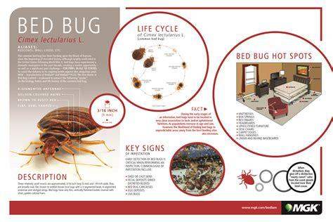 bed bug deterrent bed bug control mgk