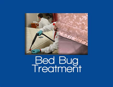bed bug service carpet cleaner staten island 20 off all cleaning