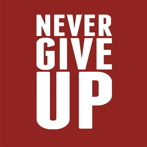 H 190906 Never Give Up never give up vegan rabbit