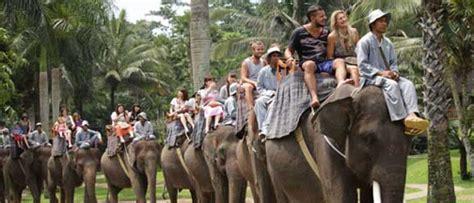 Taro Elephant Safari Park Bali - Entrance Price & Park ...