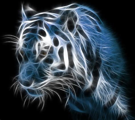 samsung galaxy  wallpapers hd beautiful black  white tiger wallpaper