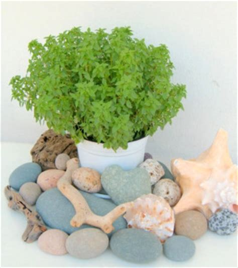 cheap beach home decor beach stones cheap decorating ideas for cheap home decor