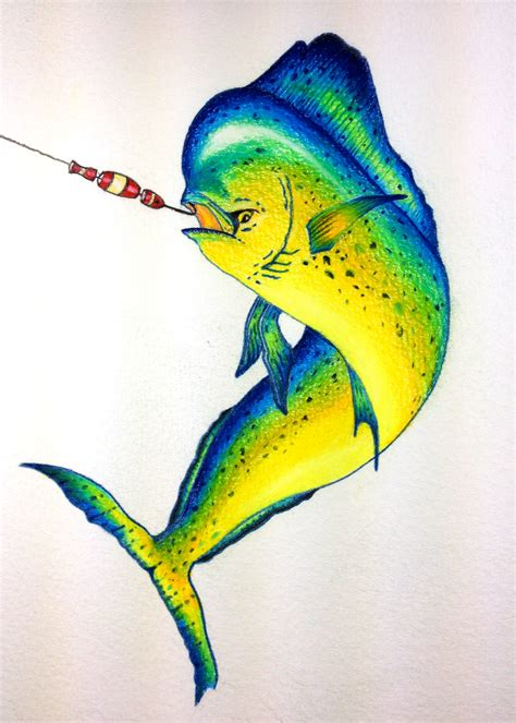 mahi mahi tattoo fish mahi mahi quot hooked up quot colored pencil artist