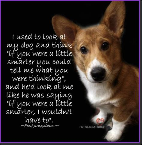 my pet connection inspirational â tailsâ of adoption books 7 best images about corgi quotes on quote