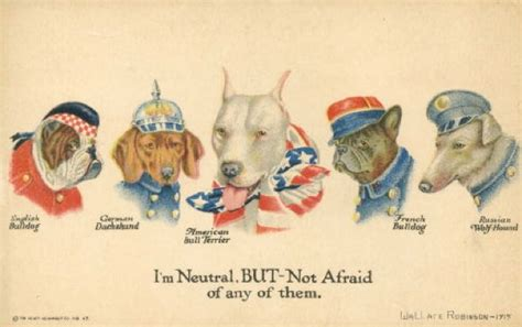 Sgt Stubby Poster Pit Bulls As Mascots And War Dogs For The American
