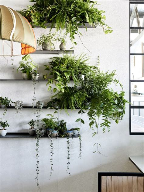 interior plant wall how to decorate your interior with green indoor plants and
