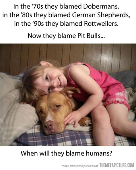 which is more dangerous rottweiler or pitbull can t agree more the meta picture