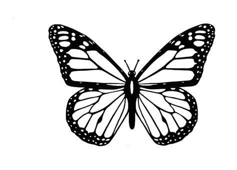 Illustration Gratuite Papillon Noir Et Blanc Image Insecte Dessin Illustration De Dessin De Papillon Noir Sur Fond Blanc L