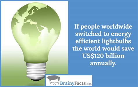 energy efficient light bulbs facts recycling facts efficient lightbulbs did you